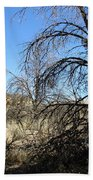 New Mexico Series - Bandelier II Beach Sheet
