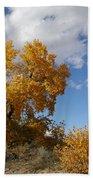 New Mexico Series - Desert Landscape Autumn Beach Sheet