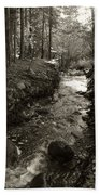 New Mexico Series - Late Winter Streambed Beach Towel