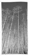New Mexico Series - Leaf Free Black And White Beach Towel