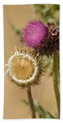 New Mexico Thistle II Beach Towel