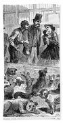 New York: Dog Pound, 1866 Beach Towel