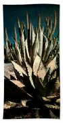 Night At The Desert's Edge Beach Towel