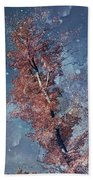 Nighty Tree Beach Towel