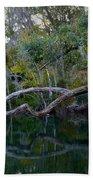 North Florida River Reflections Beach Towel