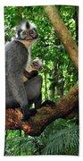 North Sumatran Leaf Monkey Presbytis Beach Towel