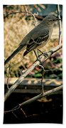 Northern Mockingbird On The Highline Beach Towel