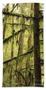 Northwest Mossy Tree Beach Towel