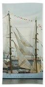 Nve Cisne Branco Passing By Fort Mchenry Beach Towel