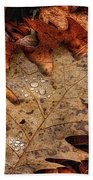 Oak Leaf 1 Beach Towel