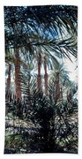 Oasis At Death Valley Beach Towel