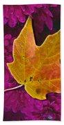 October Hues Beach Towel by Paul Wear