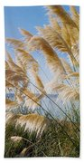 Of Sun And Sky And Wind Beach Towel