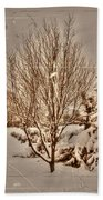 Old Country Christmas Beach Towel