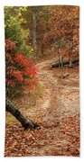 Old Country Road In Shannon County Beach Towel