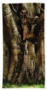 Old Fig Tree Beach Towel by Kaye Menner