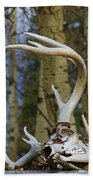 Old Skull And Antlers Beach Towel