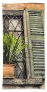 Old Window And A Green Plant Beach Towel