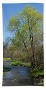 On The Banks Of Spring Beach Towel