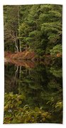 Once Upon An Autumn Morn Beach Towel