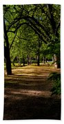 One Day In The City Park Beach Towel