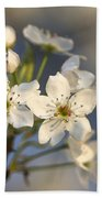 One Fine Morning In Bradford Pear Blossoms Beach Towel