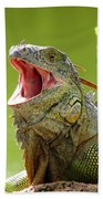 Open Mouth Iguana Beach Towel