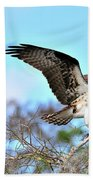 Opsrey Spreading It's Wings Beach Towel