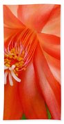 Orange Cactus Beach Towel