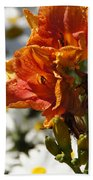 Orange Day Lilies In The Sun Beach Towel