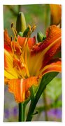 Orange Day Lily Beach Towel