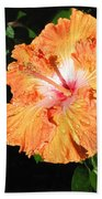 Orange Hibiscus After The Rain 1 Beach Towel