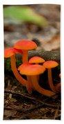 Orange Mushrooms Beach Towel
