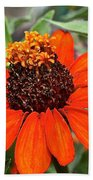 Orange Petals Beach Towel