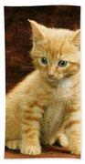 Orange Tabby Mixed Breed Kitten  Beach Towel