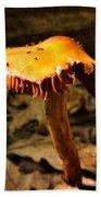 Orange Wild Mushroom Beach Towel