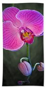 Orchid And Buds Beach Towel