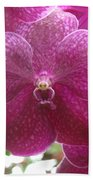 Orchid Cluster Beach Towel