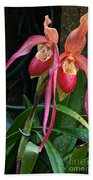Orchid Mysteries Beach Towel