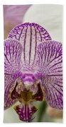 Orchid Originality Beach Towel