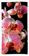 Orchids 2 Beach Towel