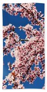 Oregon, United States Of America Cherry Beach Towel