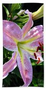 Oriental Lily Named Tom Pouce Beach Towel