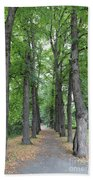 Oslo Trees Beach Towel