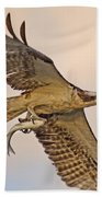Osprey Catches Big Fish Beach Towel