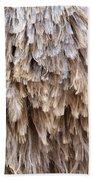 Ostrich Fluff Beach Towel