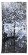 Our Pond In The Snow Beach Towel