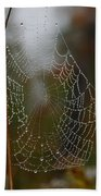 Out In The Morning Dew Beach Towel