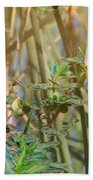 Out On The Pond Beach Towel