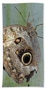 Owl Butterfly Beach Towel